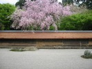 Kyoto5_1